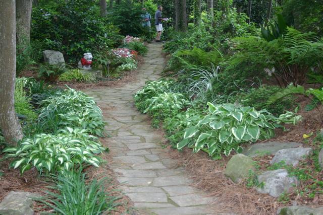 Georgia Gardener Newsletter
